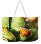 Ladybug And Chick Weekender Tote Bag