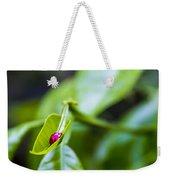 Ladybug Cup Weekender Tote Bag