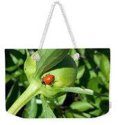 Ladybug Ladybug  Weekender Tote Bag