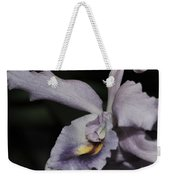 Laeliocattleya Blue Boy 1 Of 2 Weekender Tote Bag