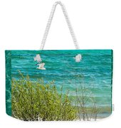 Lake Michigan Seagull In Flight Weekender Tote Bag