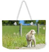 Lamb On The Farm Weekender Tote Bag