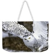 Landing Of The Snowy Owl Where Are You Harry Potter Weekender Tote Bag