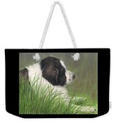 Landseer Newfoundland Dog In Grass Pets Animal Art Weekender Tote Bag