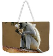 Langur With Kulfi Weekender Tote Bag