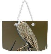 Large-billed Savannah Sparrow Weekender Tote Bag