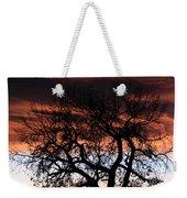 Large Cottonwood At Sunset Weekender Tote Bag