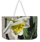 Large-cupped Daffodil Named Ice Follies Weekender Tote Bag