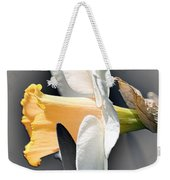 Large-cupped Daffodil Named Mrs. R.o. Backhouse Weekender Tote Bag