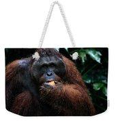 Large Male Orangutan Borneo Weekender Tote Bag