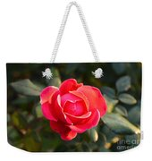 Last Rose Of Summer Weekender Tote Bag