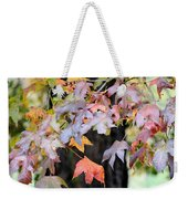 Late Autumn Maples Weekender Tote Bag