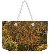 Late Autumn Walk Weekender Tote Bag