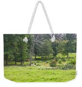 Late Summer By The Pond Weekender Tote Bag