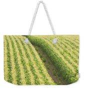 Late Summer Corn Field In Maine Weekender Tote Bag