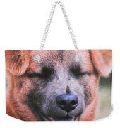 Laughing Dog Weekender Tote Bag