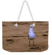 Laughing Gull 004 Weekender Tote Bag