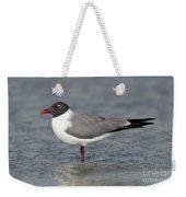 Laughing Gull Weekender Tote Bag