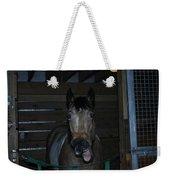Laughing Horse Weekender Tote Bag