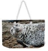 Laughing Seal Weekender Tote Bag