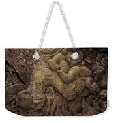 Lava Mother With Child On Galapagos Islands Weekender Tote Bag
