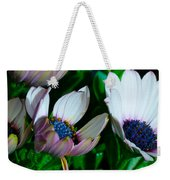 Lavender Frost African Daisy Weekender Tote Bag