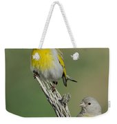 Lawrences Goldfinch Pair On Perch Weekender Tote Bag