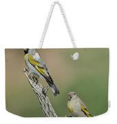 Lawrences Goldfinch Pair Perched Weekender Tote Bag