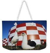 Laysan Albatross Pair Nesting Midway Weekender Tote Bag