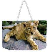 Lazy Cub Weekender Tote Bag