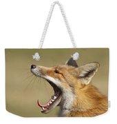 Lazy Fox Weekender Tote Bag