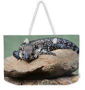 Lazy Lizard 2 Weekender Tote Bag