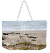 Lazy Seals Weekender Tote Bag