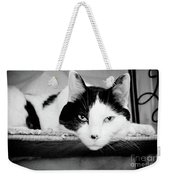 Le Cat Weekender Tote Bag by Andee Design