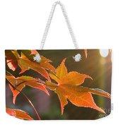 Leaf In The Sun Weekender Tote Bag