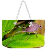 Leaf Katydid Weekender Tote Bag