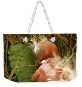 Leaf Pillow Weekender Tote Bag by Shane Holsclaw
