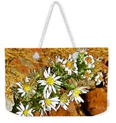 Leafy-bract Asters In Wildcat Canyon Trail Along Kolob Terrace Road In Zion National Park-utah Weekender Tote Bag