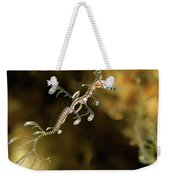 Leafy Sea Dragon Hatchling Rapid Bay Weekender Tote Bag by John Lewis