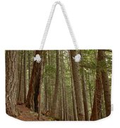 Leaning Over The Trail Weekender Tote Bag