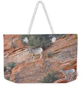 Learning How To Rock Climb Zion Weekender Tote Bag
