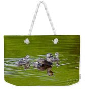 Least Grebe And Young Weekender Tote Bag