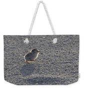 Least Tern Chick Weekender Tote Bag