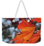 Leaves Backlit 3 Weekender Tote Bag