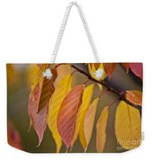 Leaves In Fall Weekender Tote Bag