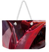 Leaves Of The Red Ti Plant Weekender Tote Bag
