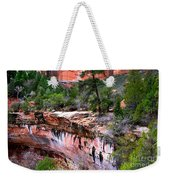 Ledge At Emerald Pools In Zion National Park Weekender Tote Bag