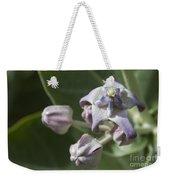 Lei Pua Kalaunu - Crown Flower - Calotropis Gigantea - Asclepiadaceae Weekender Tote Bag