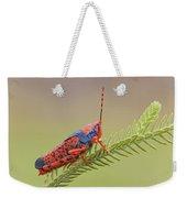 Leichhardts Grasshopper On Pityrodia Weekender Tote Bag
