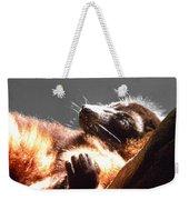 Lemur Lounging Weekender Tote Bag